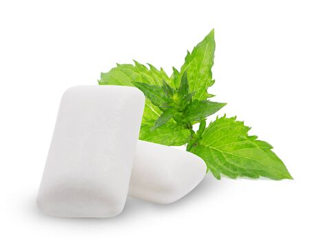 Fresh leaves mint with two chewing gum