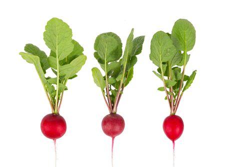 Fresh red radish isolated on white 版權商用圖片