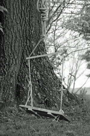 bw: homemade swing tied to tree with rope with wood seat taken in black and white