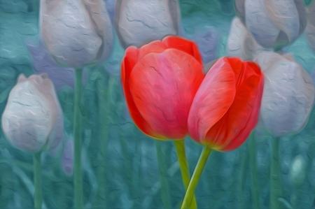 Spring Tulip Blues