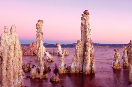 Morning Light on Tufa, Mono Lake  Standard-Bild
