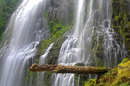 proxy falls: Santiam Falls