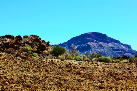lonelyness: Tenerife nature  view near Teide volcano  Stock Photo
