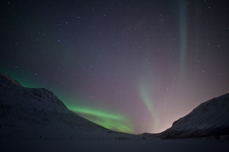 arctic zone: Aurora Borealis  Northern lights  behind mountains