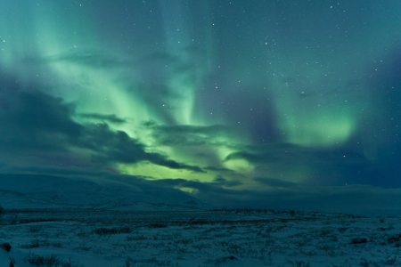 auroral: Aurora Borealis  Northern lights  swirling in the sky