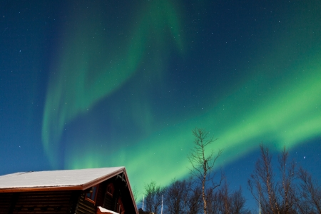 auroral: Aurora Borealis  Northern lights  above cabins