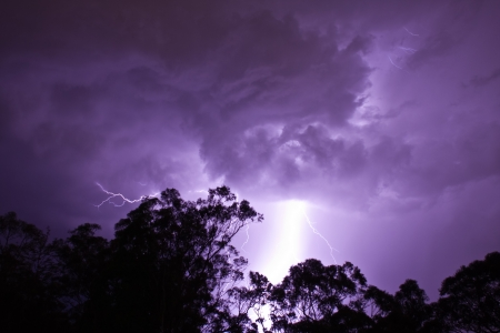 Lightening Strikes behind gumtrees Stock Photo