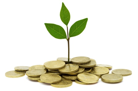 Green Investment Stock Photo - 14610016