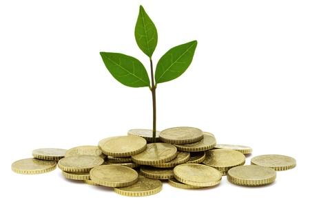 dinero euros: Inversi�n Verde