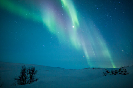 auroral: Aurora borealis over Scandinavia
