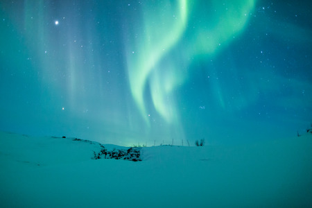 alpine zone: Aurora borealis over Scandinavia