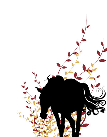 hooves: cavallo