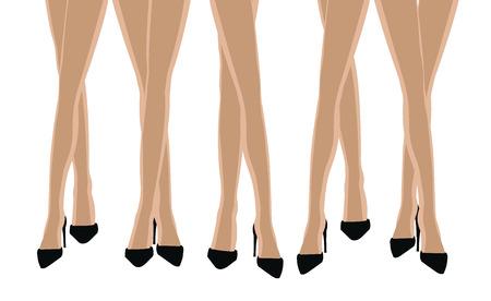legs heels: legs