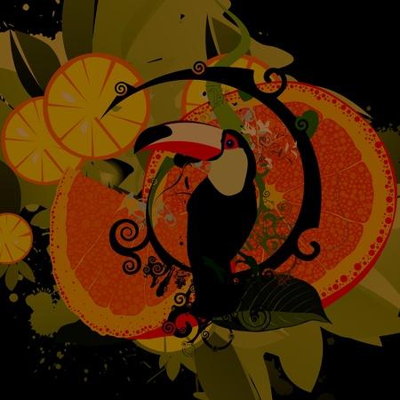 central park: toucan Illustration