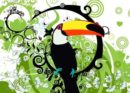venezuela: toucan Illustration