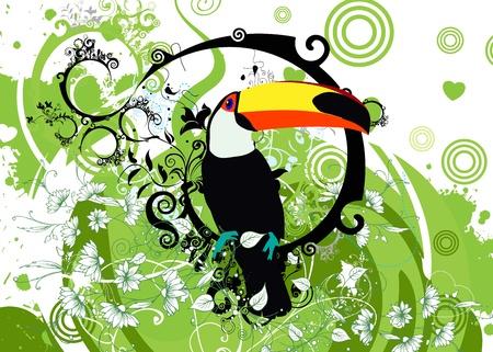keel: toucan Illustration