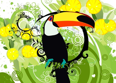 forest conservation: toucan Illustration