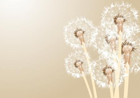 fallschirmj�ger: Blumen-