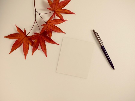 Maple leaves and photographs, postcards, notes Stock Photo