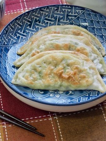 Asian food fried dumplings