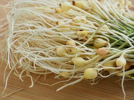 Koreanische Lebensmittelzutaten wilder Schnittlauch Standard-Bild
