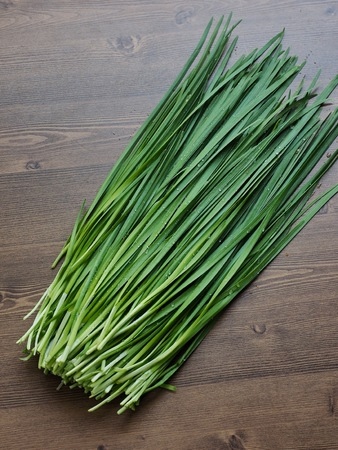 Korean fresh vegetable Chives, organic farming