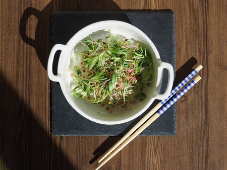 Fresh sprout and Sedum sarmentosum salad Stock Photo
