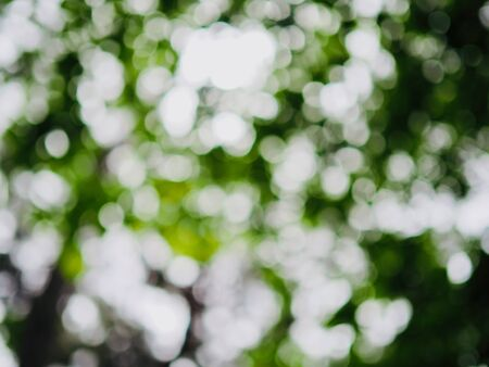 Abstract summer background with bokeh