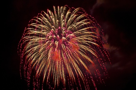 Fireworks beautiful bright colors and shapes