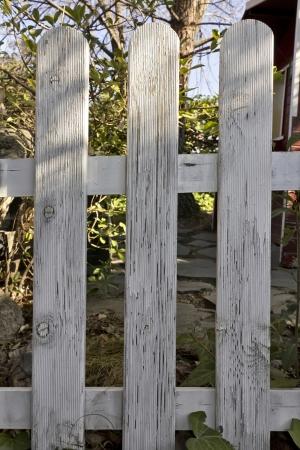 wooden fence in garden photo