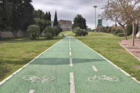 two-way bike path in a park photo