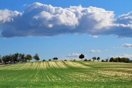 culture landscape in perspective with clouds in the sky photo