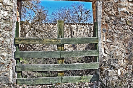 Old wooden door for livestock Stock Photo - 17191161