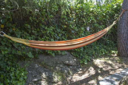 a comfortable hammock between two trees photo