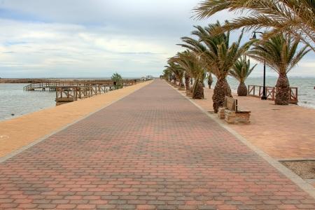 san pedro: promenade with palm trees in San Pedro del Pinatar, Spain