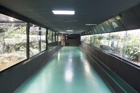 vivarium: small animal exhibitor hall