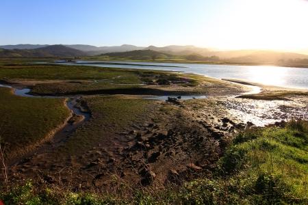 goteros: Sobre el mar, algunas bateas (cultura balsa de mejillones)
