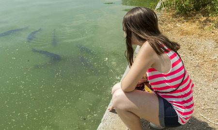 young girl watch the fish in a pond photo