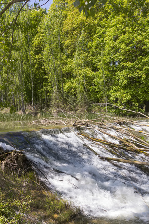 spillway: light cascading clear water in a calm river