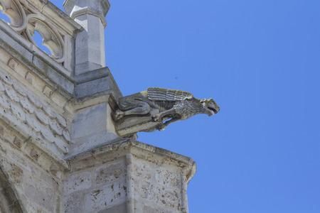 gargouilles: Gargouilles de la cath�drale de Palencia, La Belle inconnue, Palencia, Espagne