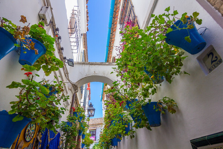 Typical windows with grilles and decorative flowers in the city of Cordoba, Spain