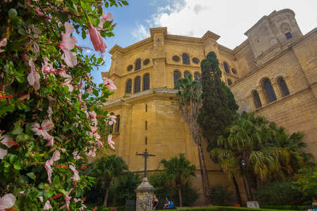 incarnation: Gardens of the Cathedral of Malaga, Spain