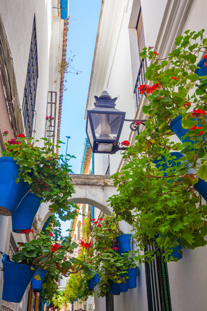 Typical windows with grilles and decorative flowers in the city of Cordoba, Spain photo