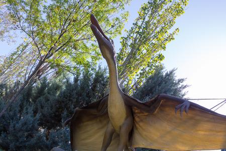 carnivore: flying Pteranodon dinosaur carnivore