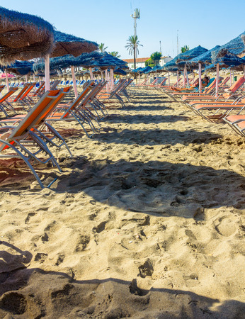 loungers: rows of blue and sun loungers parasols oranges on the beach