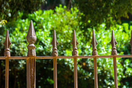 spear: iron fence spear points