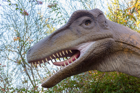 carnivore: Velociraptor dinosaur carnivore fast
