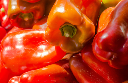 red peppers: Capsicum Fresh red peppers Stock Photo