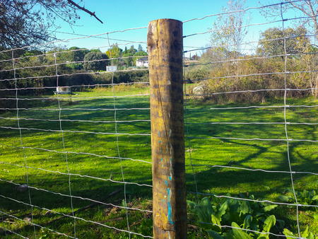 wooden post on a fence in the field