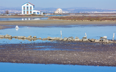 Flooded area at low tide in Murcia, Spain